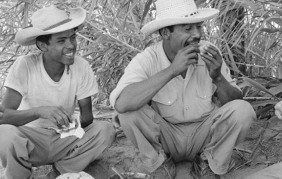 These Photos Give a Glimpse of the Life of Mexican Migrant Workers in the 1950s
